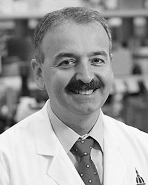 Ahmet Hoke, M.D., Ph.D.
