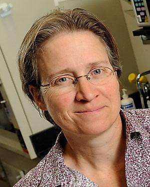Rachel Green, Ph.D.