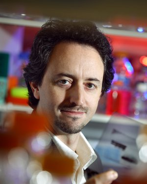 Joel Pomerantz, Ph.D.